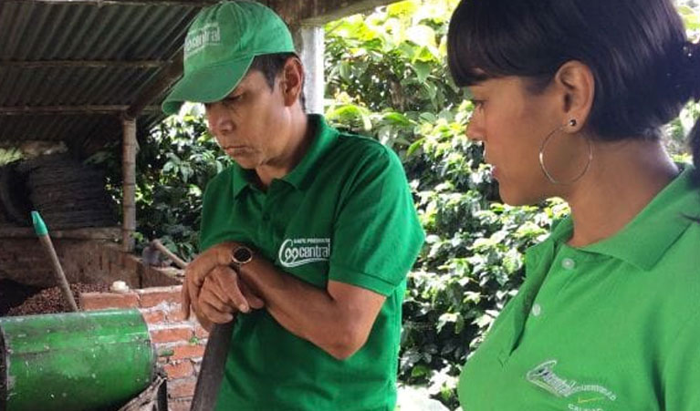 Strauss coffee and sustainable harvest help women growers in Colombia